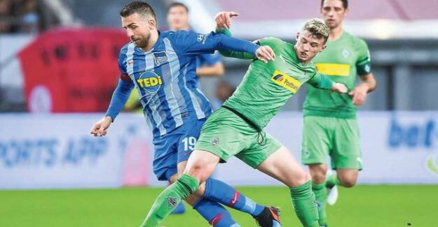 Hertha BSC : Vedad Ibisevic is too old for doubt