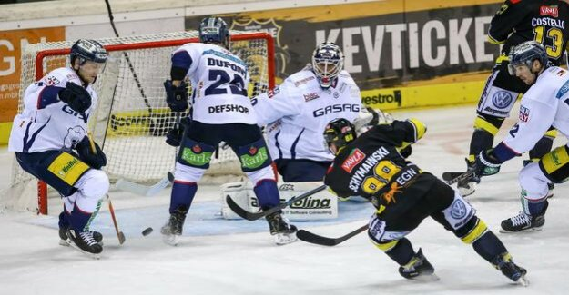 Ice hockey : eisbaren Berlin-Krefeld: a Lot of Fans, no points