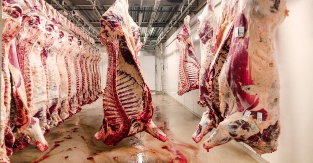 Meat from sick animals have been sold to Sweden