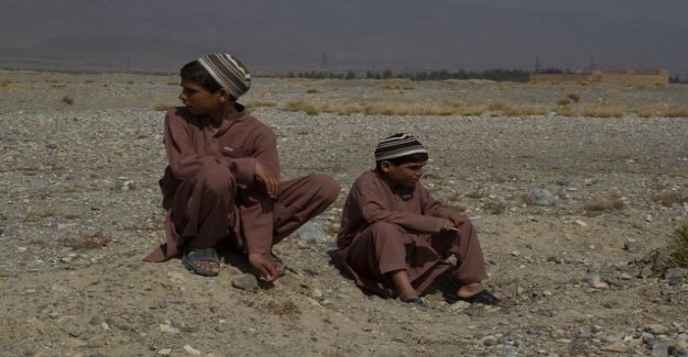 Only two sufferers in the world: Pakistanis brothers are paralyzed for the night - talk, they walk during the day