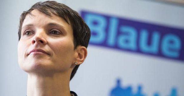 Petry needs to delete the blue party as a brand