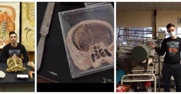 Real brain. Good! KU Leuven is absolutely not set up with the 'visit' of urban explorers in abandoned building