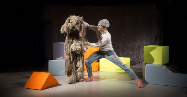 Scenrecension: Danceable and universal about the desire for four-legged companion