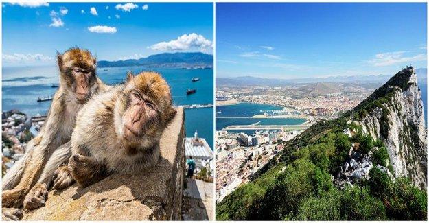 Spanienexpertens best tips to the costa del sol