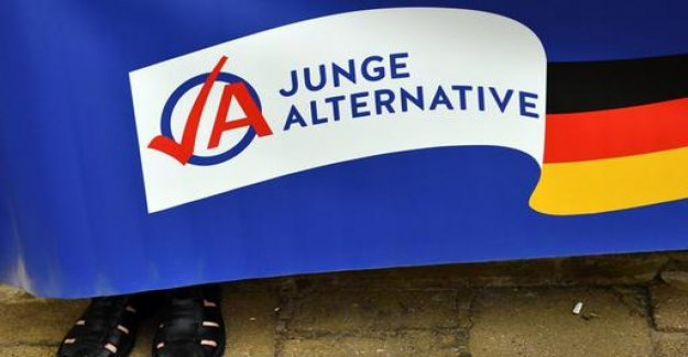 Test case AfD: Internal criticism of Young Alternative