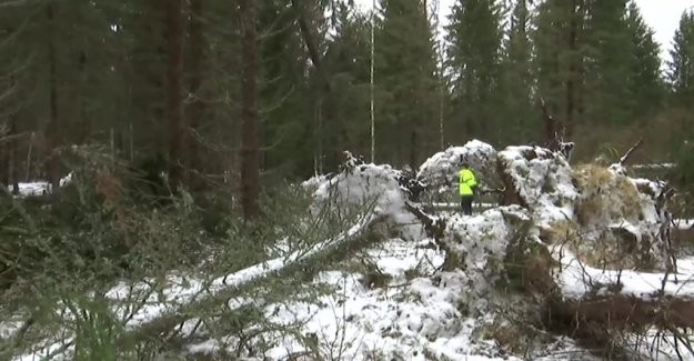 The 17,000 still be without power after Alfrida