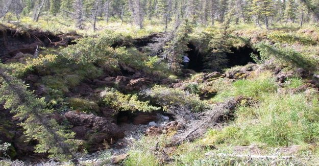 The permafrost is increasingly threatened
