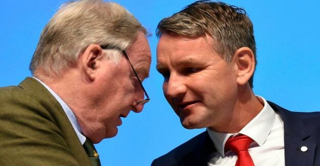 The protection of the Constitution : The opinion, it makes the AfD for test case