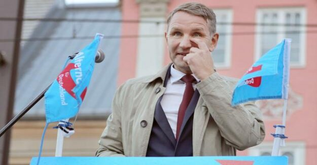 The protection of the Constitution authorities have the AfD opinions to publish