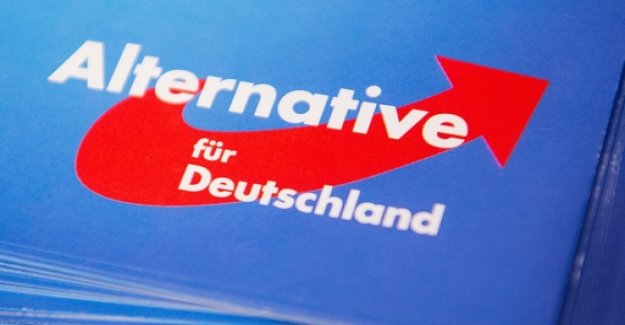 The protection of the Constitution explains the AfD nationwide to the test case