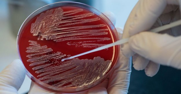 The united nations wants to toughen the fight against resistant bacteria