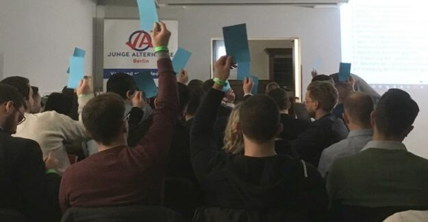 Young Alternative Berlin : AfD-youth: New Board, old trenches