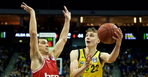 Alba Berlin vs Bamberg : The Cup final is a duel of opposites