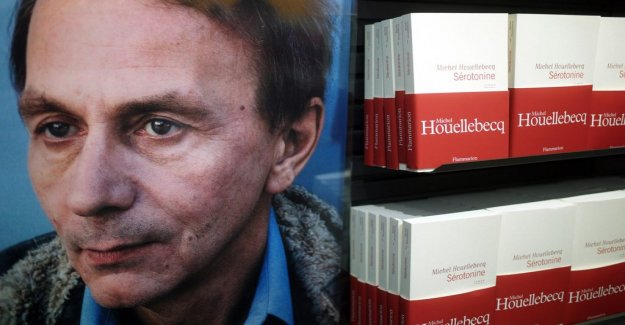 Book review: What is Michel Houellebecqs popularity a symptom of?