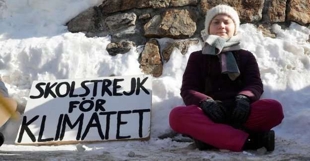 Companies used the Greta Thunberg name – without telling you