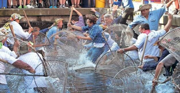 Equality : In Memmingen, it is disputed whether women can catch fish