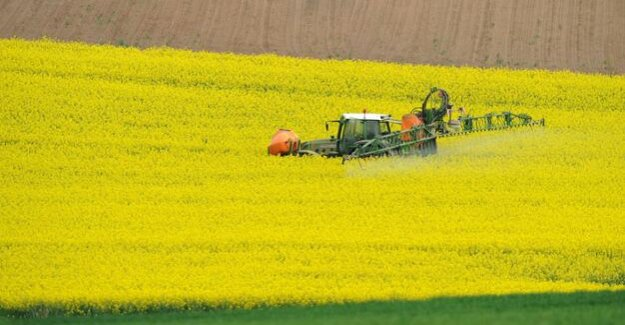 Food safety : EU Agency needs to show more transparency