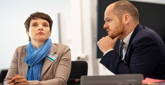 Loan from AfD-times : perjury trial against Petry starts in Dresden