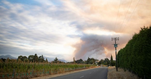 New Zealand hit by huge fire in the forest: 2,000 acres in the ashes, thousands of evacuations