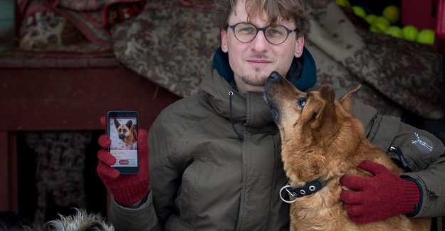 New app lets you Tindergewijs swiping the screen to match it with your ideal dog