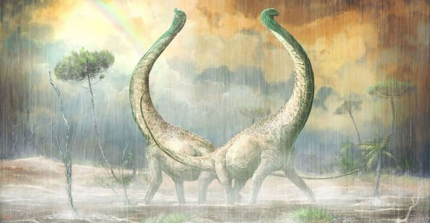 New dinosoort discovered, and that can provide insight into why some are so gigantic were
