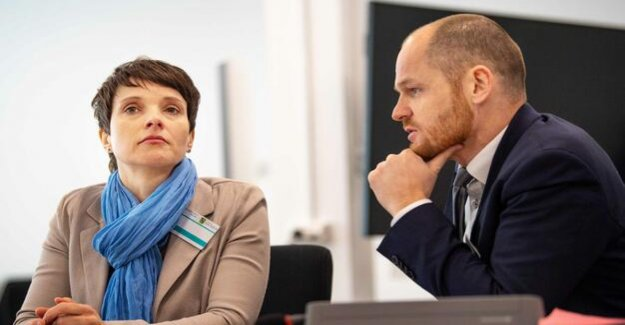 Perjury trial in Dresden : the Silence of the Frauke Petry