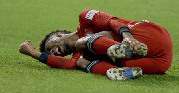 Prior to Liverpool : Bayern breathe in: Coman probably not hurting