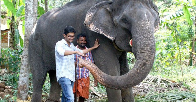Record: the Asian elephant in India at the age of 88, died
