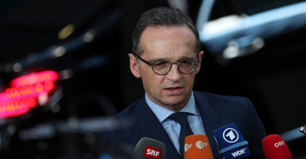 Release of IS prisoners: EU Ministers criticize Trump