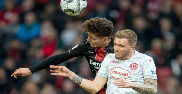 Rheinisches Derby : 2:0 Leverkusen celebrates earlier carnival
