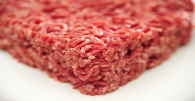Salmonella in minced beef from Lidl – withdrawn
