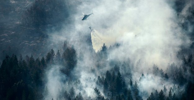 Study: Sweden is not prepared for the large forest fires