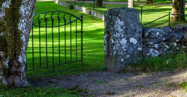 Tombstone in 1882 revealed already forgotten pets story