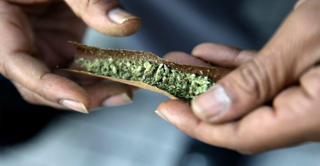 Amina Manzoor: Not either this study can conclude that cannabis leads to psychosis