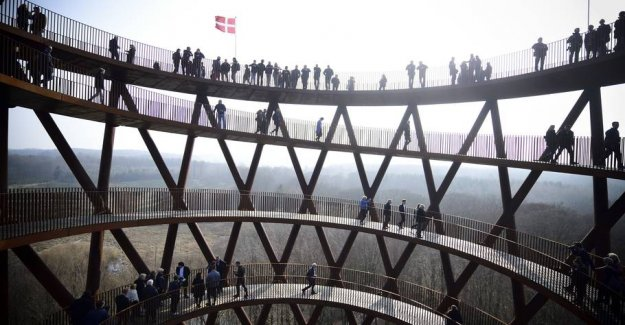 Big viewing tower, opened in the Danish forest: Getting to the top