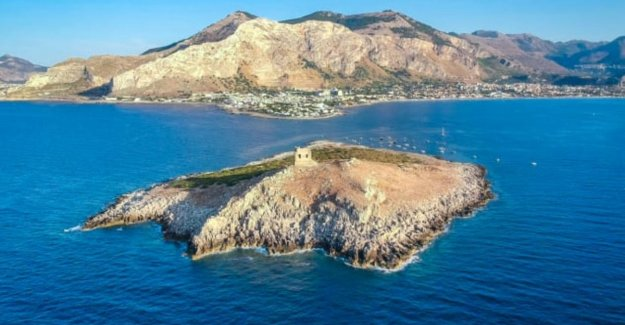 Buy your own Italian paradise, including cool old watchtower