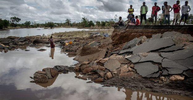 Cholera is raging in Mozambique: has doubled in the last few days
