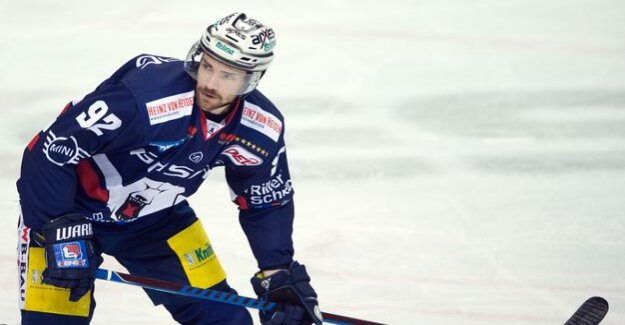 Eisbären Berlin of the football season 2018/19 : Noebels: We have to survive the first few minutes