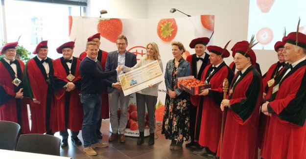 First strawberries of 2019 to deliver 8,000 euros to