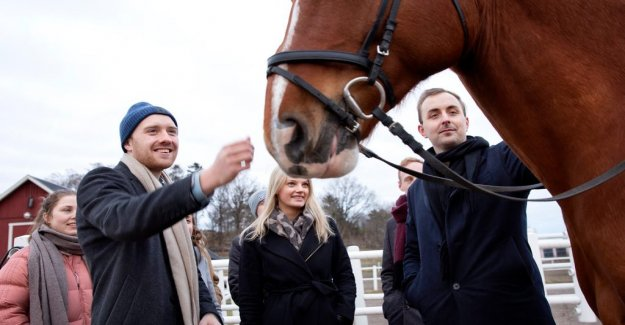 Galloping start to the new app for horse racing