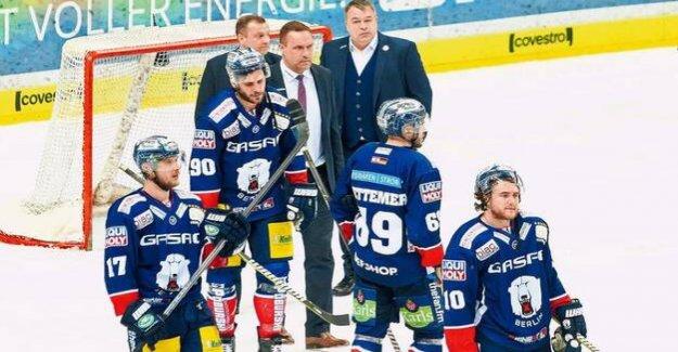 German ice hockey League : How the polar bears Berlin better can be