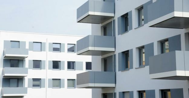 Guest contribution to the housing policy : The Berlin Senate lack the courage