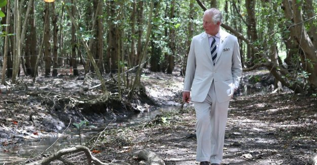 IN THE PICTURE. Prince Charles and Camilla diving Caribbean nature in