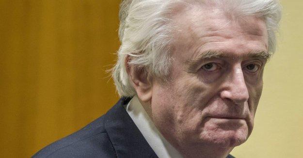Karadzic appeals the final judgment