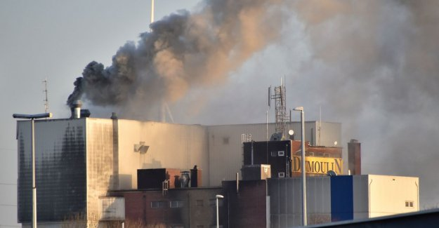Large plume of smoke in a fire started an animal feed company Dumoulin