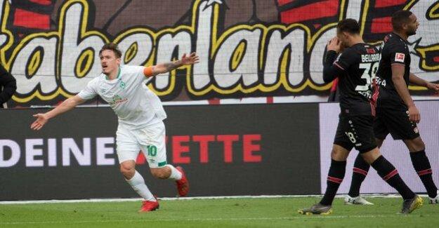Max Kruse dismantled Bayer Leverkusen : Werder Bremen win to open slugfest