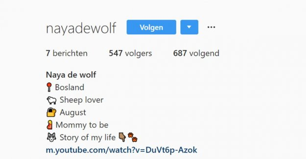 'Naya the wolf conquers now also Instagram: Jo alpacas, wa make?
