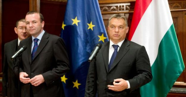 Orban in quarantine : Europe's Conservative play on time