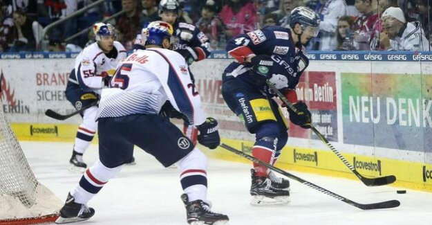 Polar bears against Munich game four : Because you know what to do