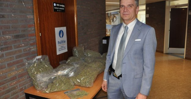 Police roll cannabisplantage in Sint-Martens-Latem: 500 plants seized
